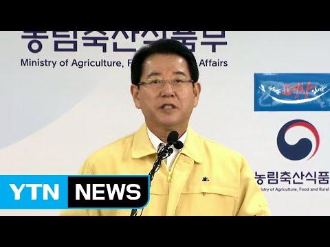 '살충제 달걀' 추가 확인…정부 대책 발표 / YTN