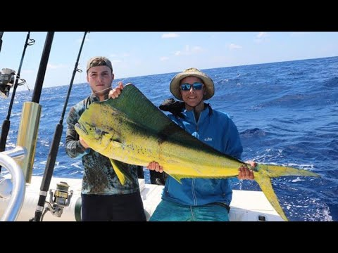Mahi Mahi Fishing-how To Catch Mahi Mahi