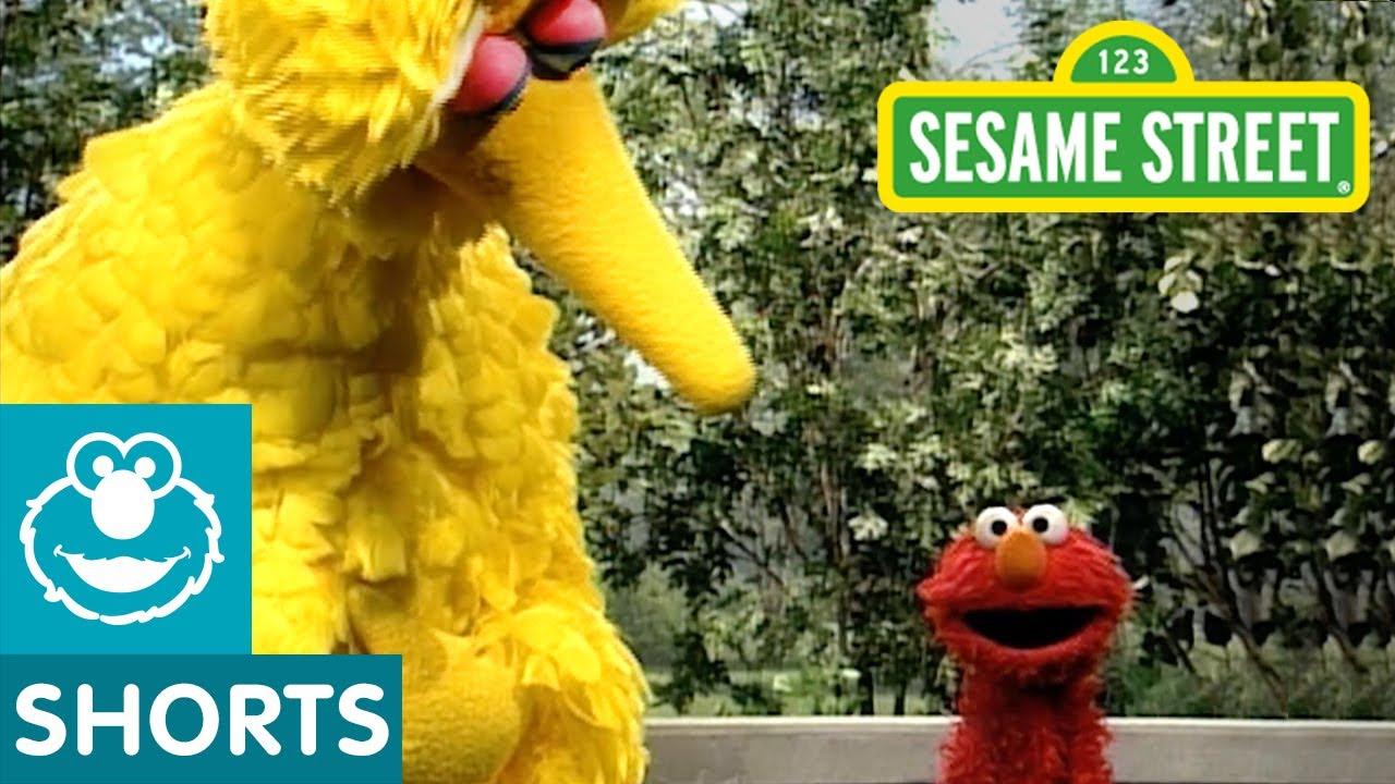 Sesame Street: Elmo Shows Emotions with Zoe, Bert and Big Bird