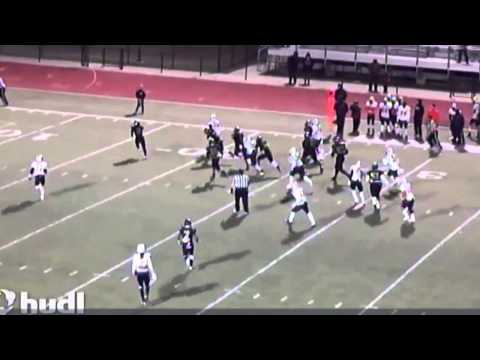Auburn Tigers 2015 Signing Day: Tyler Queen