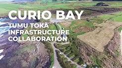 Curio Bay Tumu Toka Collaboration