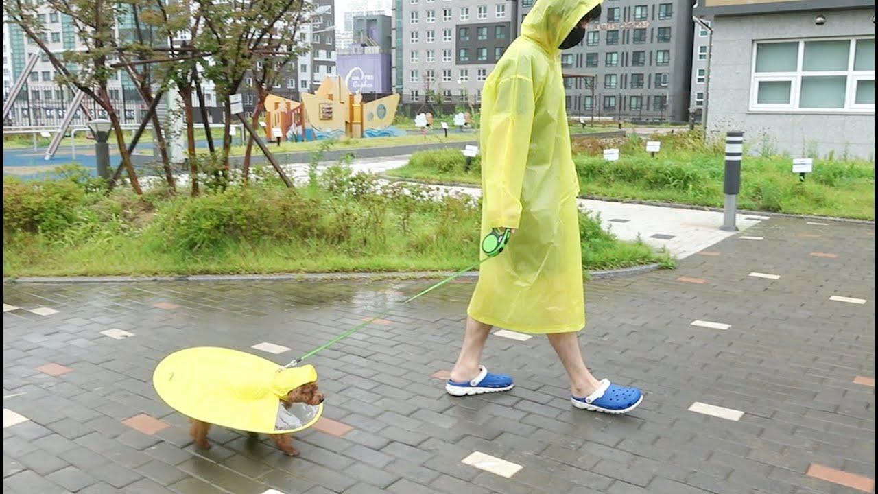 비오는 거릴 걸었어