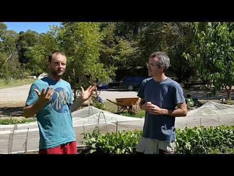 What is permaculture? Travis J Heenan (Peace farm) explains it to Organic Managers