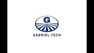 Gambar cover Gabriel-Technologie in den Gehirnwellen EN