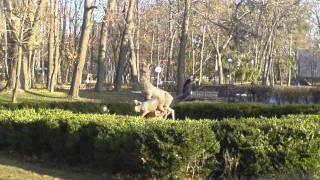 Немирів санаторій Авангард(, 2012-02-13T23:38:38.000Z)