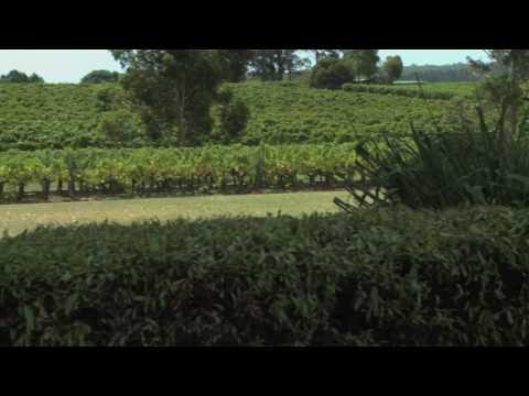 Wine Sense TV - Organic and Biodynamic Winemaking in Australia