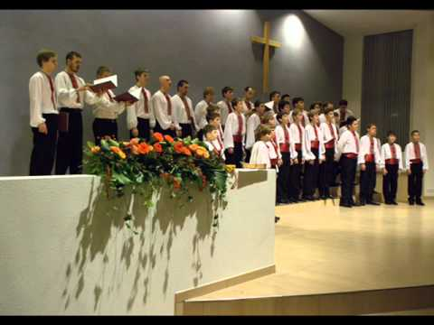 Lilium Лилиум-Boys choir Dzvinochok