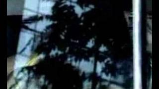 Josh Homme & PJ Harvey - Crawl Home