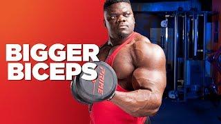 5 bicep exercises 💪 How to make bigger biceps?
