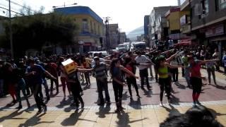 flashmob lmfao party rock por la educación