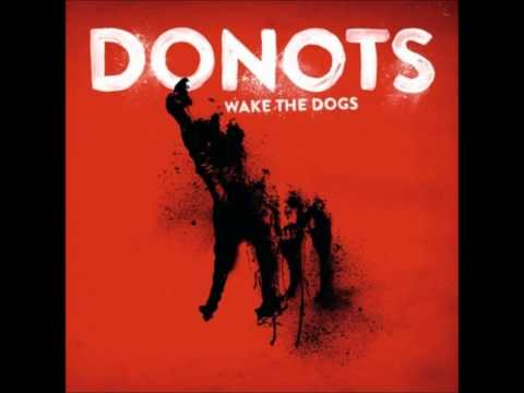 Donots - Chasing The Sky.mp3