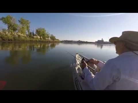 Topwater Fishing Sacramento Deep Water Canel