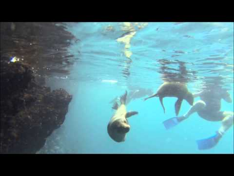 Galapagos Adventure TIP TOP II, 2013