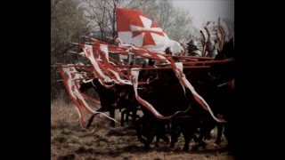 Polish Winged Hussars / Husaria