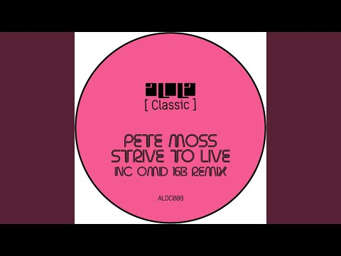 Strive To Live [Remaster] (Omid 16B Remix) Mp3