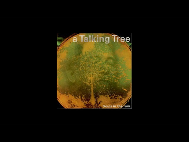 A Talking Tree - 8 Rollin' and tumblin'