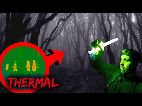 WE SHOULD NOT HAVE GONE TO HOIA BACIU (MOST HAUNTED FOREST)