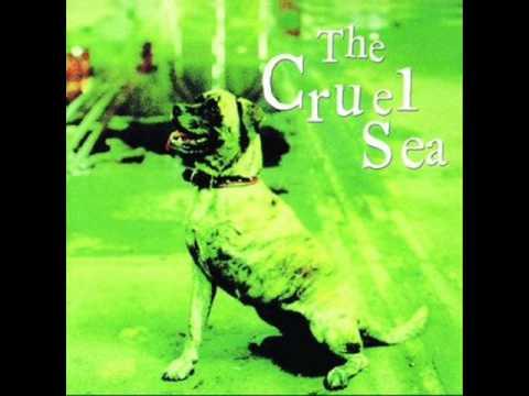 BETTER GET A LAWYER- THE CRUEL SEA