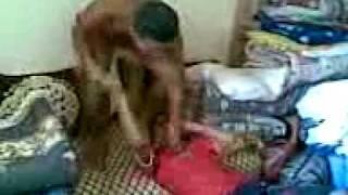 3amaliyat chan9 chmkare