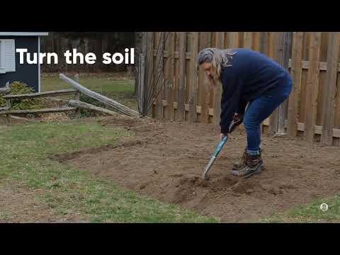 Planning Your Outdoor Garden