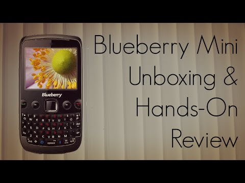 spice mobile blueberry mini video clips rh phonearena com Cooking Spice Chart Cooking Spice Chart