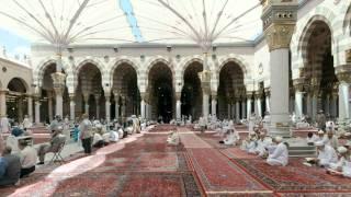 القرآن الكريم : سورة الحج Quran Translation -Ghamdi: Al-Haj : 22