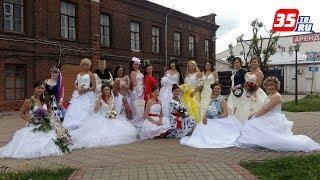 Белое платье, белая фата: череповецкие невесты устроили дефиле по улицам города
