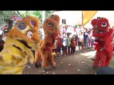 Seketip Mata (Atraksi Barongsai) Burok Dangdut KJM (Krisna Jaya Muda) Live Sumber Kidul