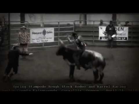 Bull Riding Spring Stampede Rough Stock Rodeo Benton