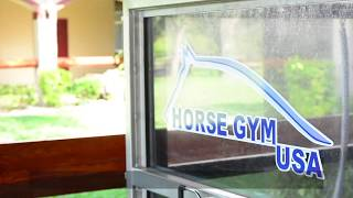 HORSE GYM USA® WATER Treadmill: How to Clean