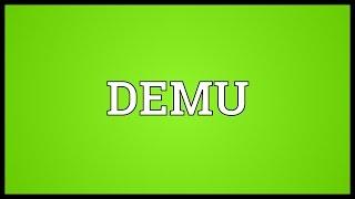 DEMU Meaning