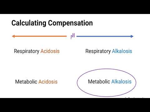 ICU Bootcamp: Arterial Blood Gas (ABG) - Interpretation Of Acid / Base Disorders