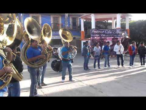 Muertos Guadalupe Etla 2014