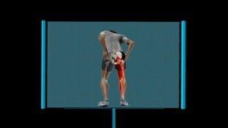 Trás perto do da parte intensa joelho de na perna dor