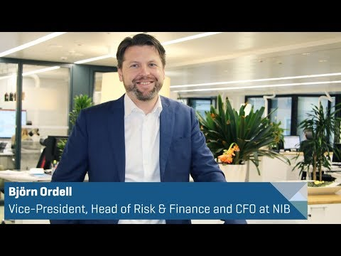 Our year in brief - Nordic Investment Bank