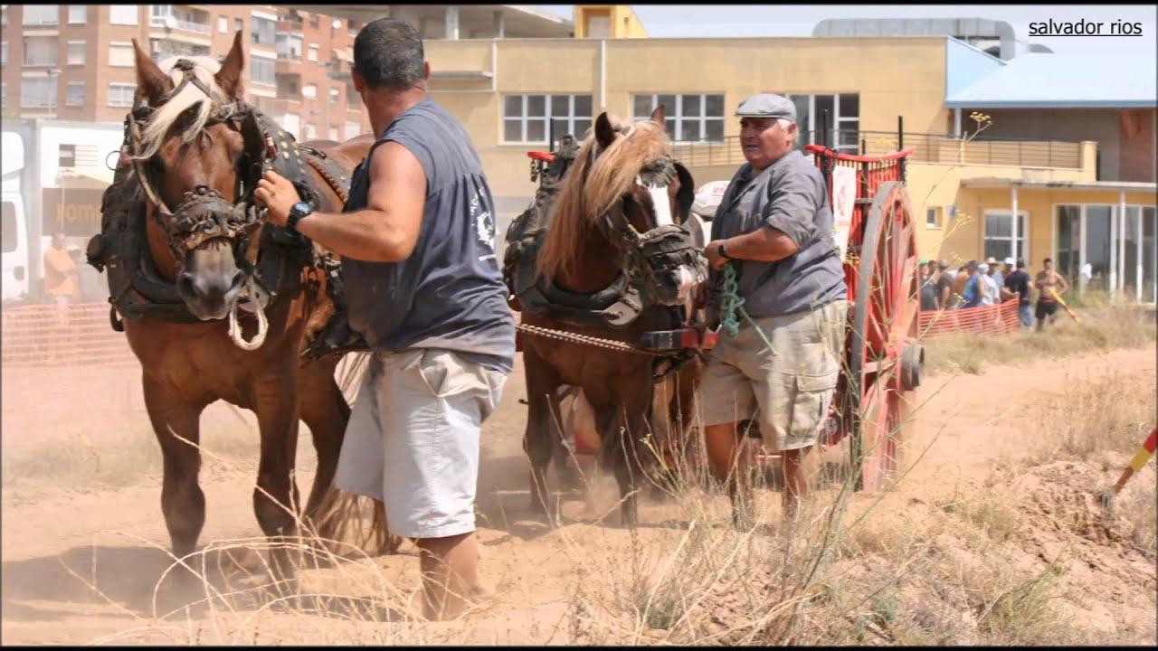 Prueba de caballos de tiro y arrastre en silla youtube for Sillas para caballos