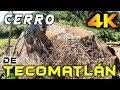 Video de Tecomatlán