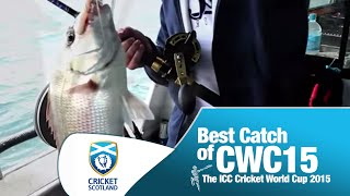 BEST CATCH OF CRICKET WORLD CUP!!!