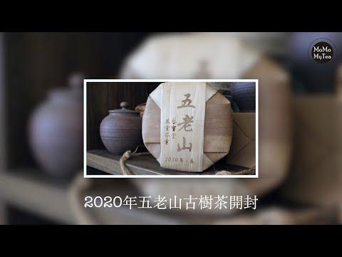 【普洱茶開箱】2020年五老山古樹純料