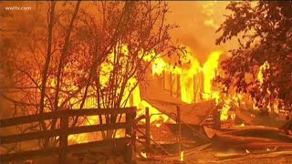 Australian natives in NOLA watch bushfires in home country with horror
