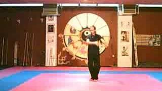 24 form (short) Yang style tai chi chuan