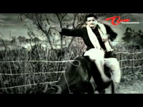 Kalasi Vunte Kaladu Sukham - Telugu Songs - Mudda Banthi Poolu Petti - NTR - Savitri