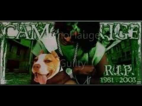 Camoflauge - Guilty