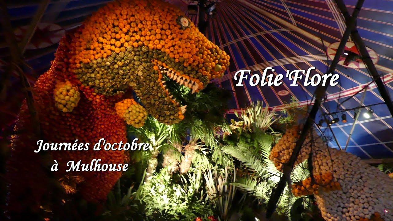 Folie'Flore au Journées d'Octobre 2015 à Mulhouse