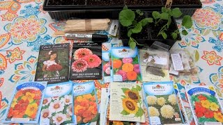 Sowing My Summer Annual Flower Seeds