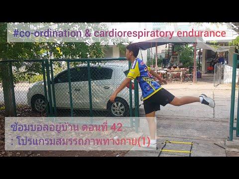 ซ้อมบอลอยู่บ้าน ตอนที่ 42 : โปรแกรมสมรรถภาพทางกาย(1)