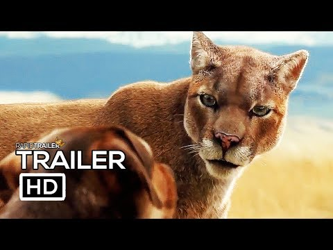 A DOG'S WAY HOME Official Trailer (2019) Adventure Movie HD