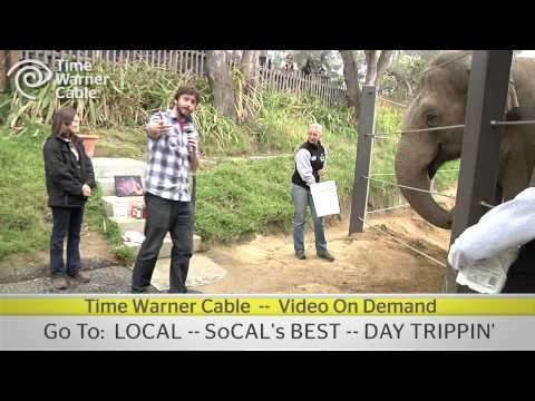 Day Trippin' at the Santa Barbara Zoo - Time Warner Cable Video OnDemand - Promo