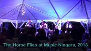 The Horse Flies (Swamp Cat Rag) at Ravine Vineyard, 2013 - Music Niagara