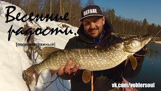 Ловля щуки весной на спиннинг. В марте на малой реке. Видео отчет от 16.03.2017 г.